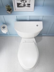 Toilet Repair Westminster