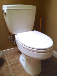 Toilet Repair Firestone CO