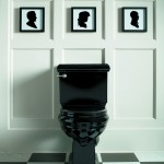 Toilet Installation Broomfield