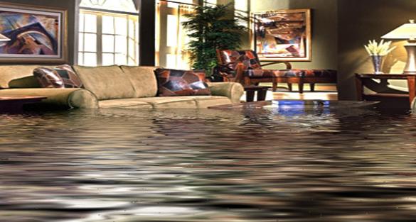 Flooded Living Room Mcadams Plumbing Inc