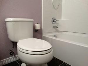 Toilet installaiton Westminster