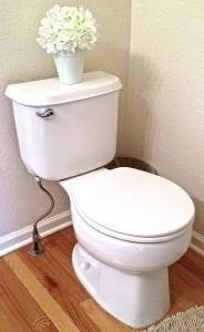 Toilet Repair Gunbarrel